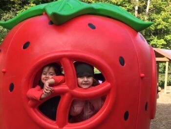 prematernellekinder-fraise-640px